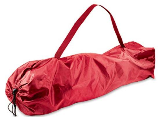 This is the carry bag in one out of three colors corresponding to the chair color.